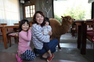 【親子遊】新社~有草泥馬陪伴用餐的綠大地景觀餐廳