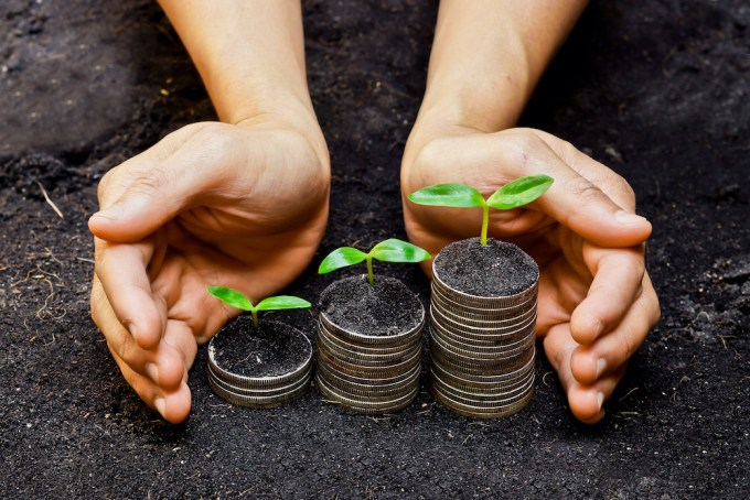 Hands holding trees growing on coins