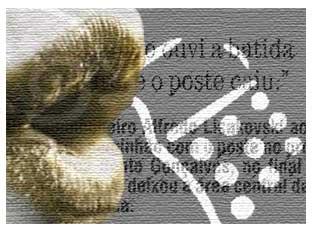 boca2.jpg