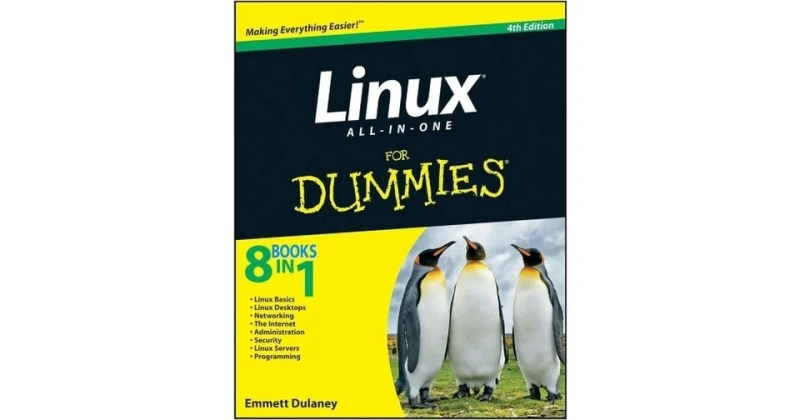 all in one dummies