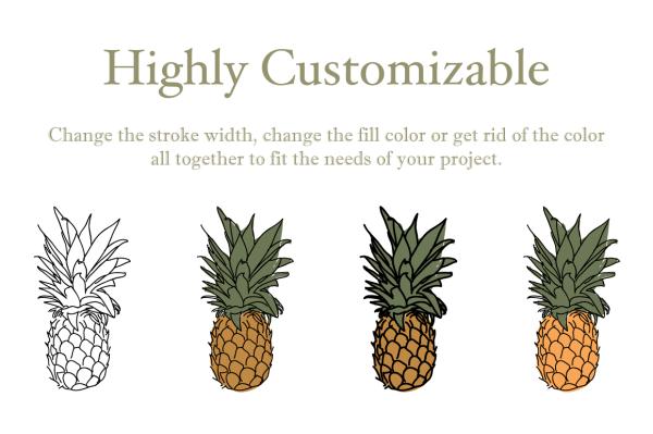 Fruit Illustrations 2