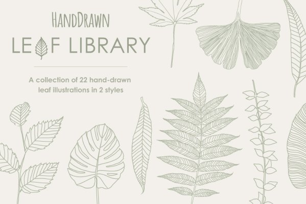 Hand Drawn Leaf Library 8