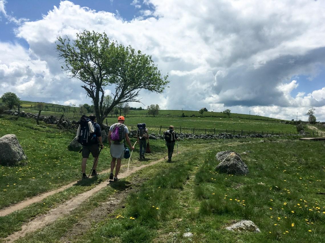 Voie du Puy en Velay GR65