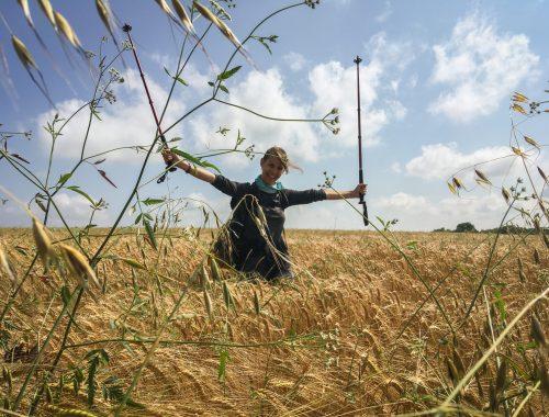 En chemin pèlerine femme bâtons de marche champs
