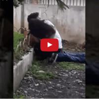 Video Hot Youtube Siswi SMK Lagi Main Kuda-kudaan dengan Pria Tua Ini Bikin Heboh Kabupaten Subang !