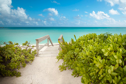 Lintons Beach  Harbour Cottages  Green Turtle Cay