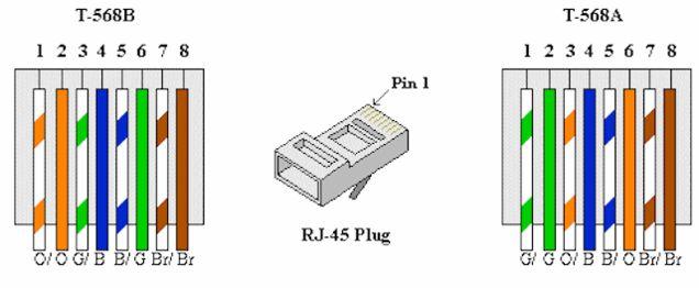cat 5 wiring diagram a or b speaker calculator cat6 standard all data oreo 6 jack