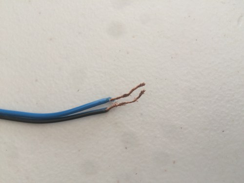 small resolution of there are two sets of wires coming out the back of the speaker 1 has 2 black wires 1 has a black and blue wire can someone tell me where each wire goes