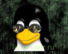 Можно в любой дистрибутив Linux установить Tor
