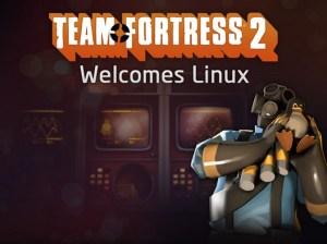Игровая платформа steam для игр в Linux
