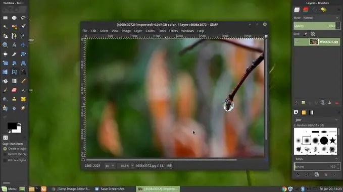 gimp customizable interface