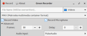 Green Recorder Screencaster