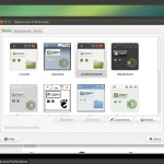 Ubuntu MATE 14.04 : MATE Control Center - Theme