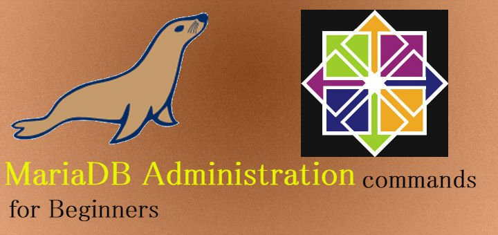 mariadb administration commands