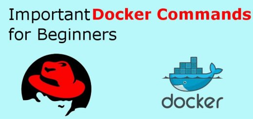 Important Docker commands