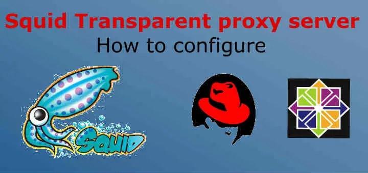 squid transparent proxy