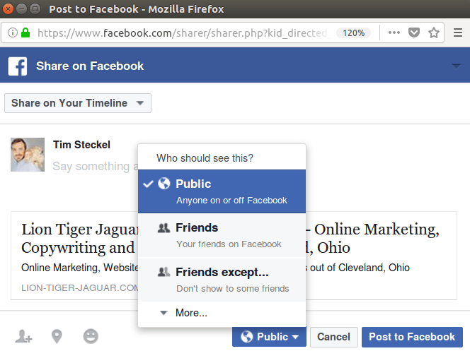 This graphic shows you how to share this article publicly on facebook:
