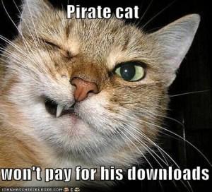 pirate_cat