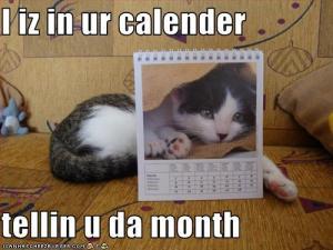 kitten-is-in-your-calendar
