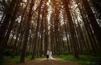 auckland wedding photography hunua falls