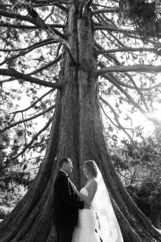 black and white portrait of bride and groom against big tree