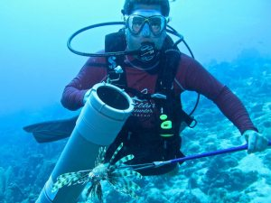 Lionfish Hunting with ZooKeeper Prototype and Pole Spear