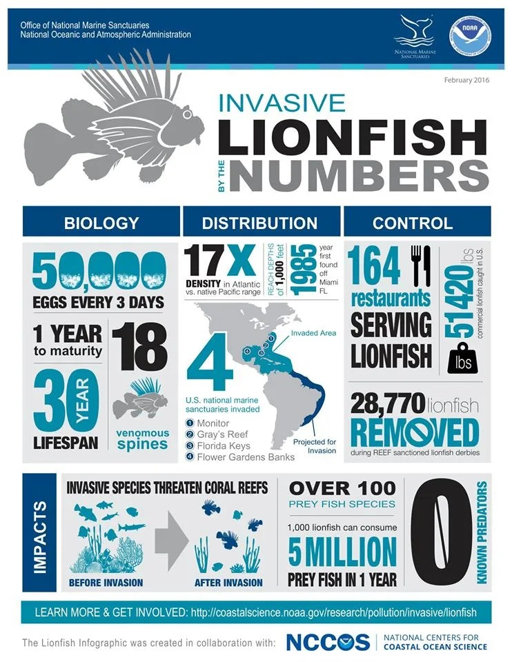 Lionfish Stats and information