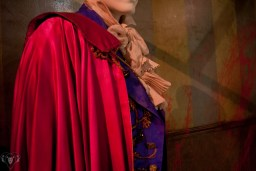 AA Best Costume Nominees 2008 0011