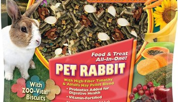 Best Pellet Foods For Rabbits