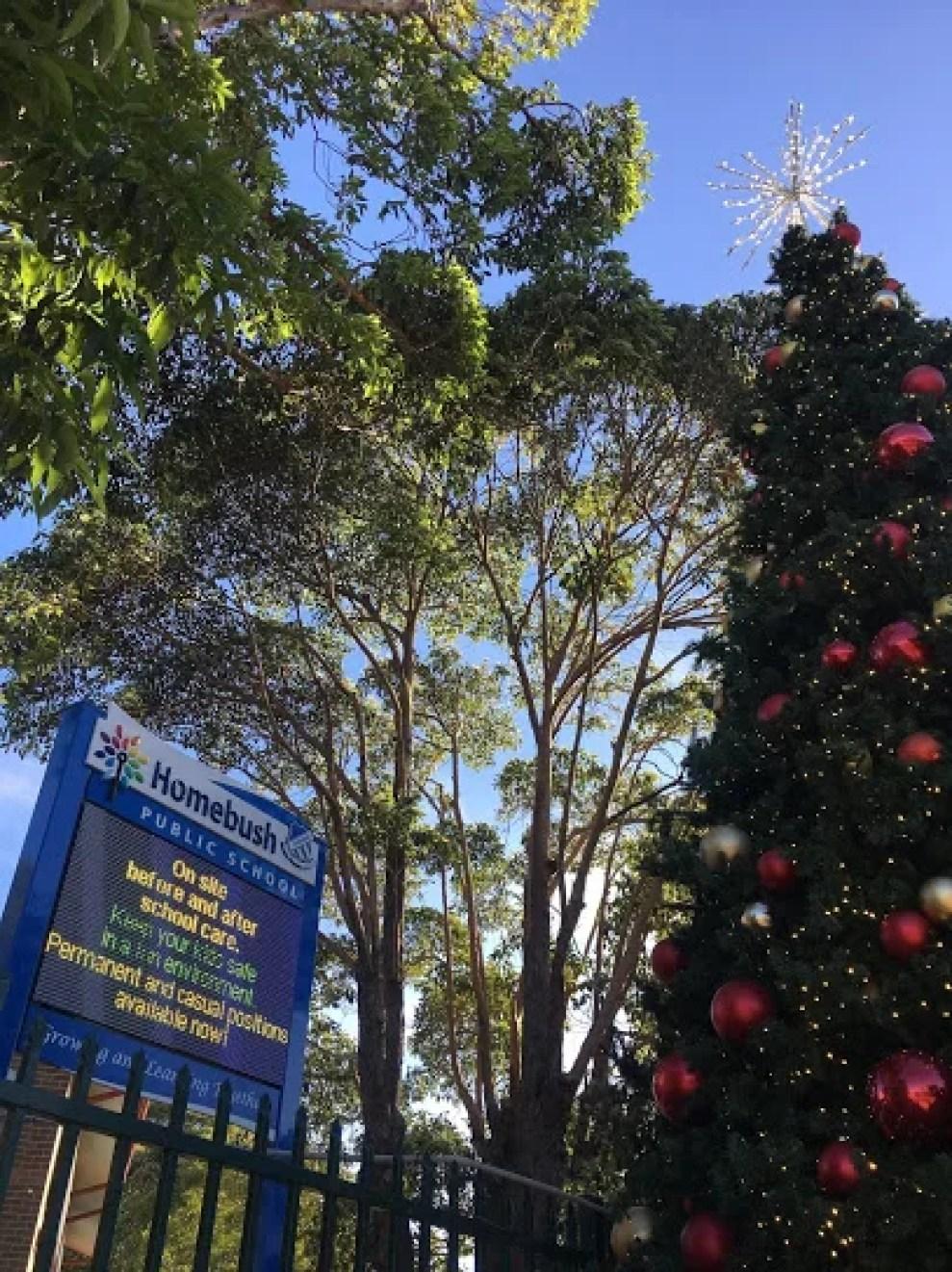 Best Primary Schools in Sydney