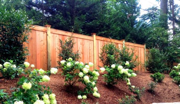 Cedar Solid Board Fence Arlington Arlington County VA by Lions Fence 3
