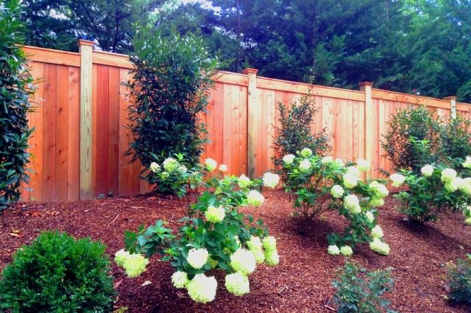 Cedar Solid Board Fence Arlington Arlington County VA by Lions Fence