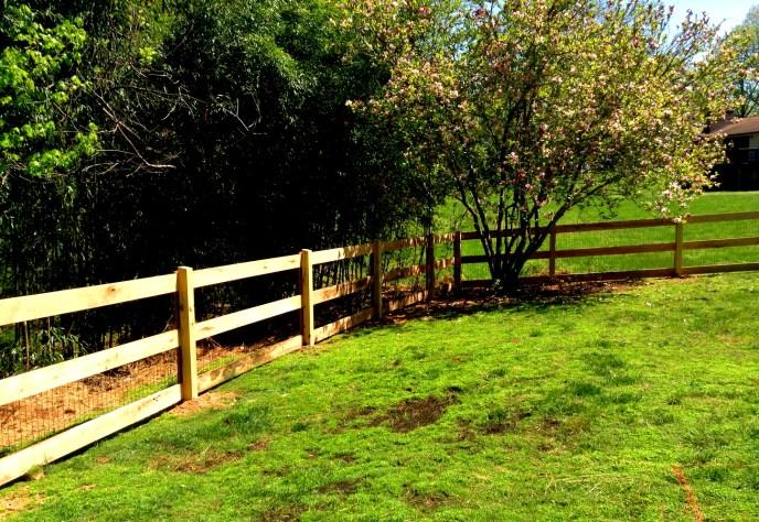 Pasture Fence Warrenton Fauquier County VA by Lions Fence 3