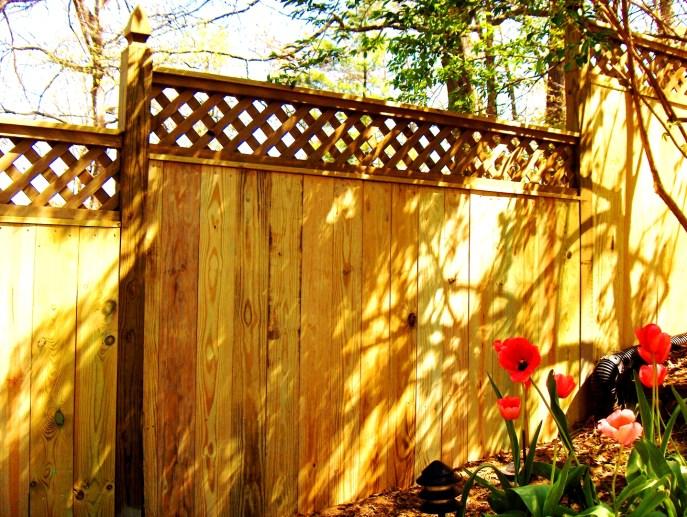Privacy with Lattice Arlington Arlington County VA by Lions Fence 4