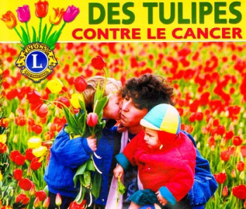tulipes_contre_le_cancer_recadre-2