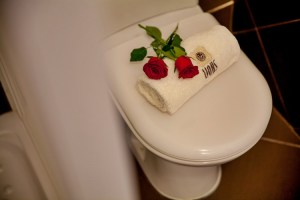 Bronze Suite-bathroom-pelion