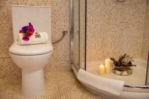 Brandy - Junior Suite 8-bathroom-xenodoxeio pelion
