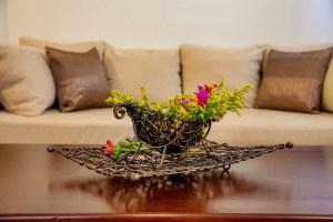 Bronze Souita-sofa-double bed-XENODOXEIO PELION