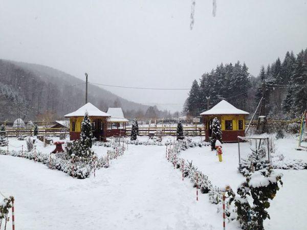 pastravaria-namaiesti-iarna-600x450