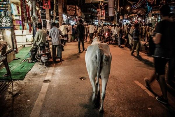 India-Varanasi-rasarit-90_1024x683-600x400