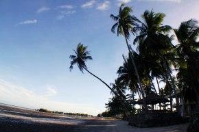 It's a date: Palawan, Filipine și puțin Dubai