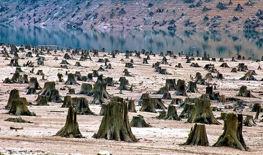 impactul-oamenilor-asupra-naturii