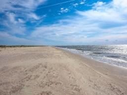 Plaja sălbatică din Vadu – informații acces și poze
