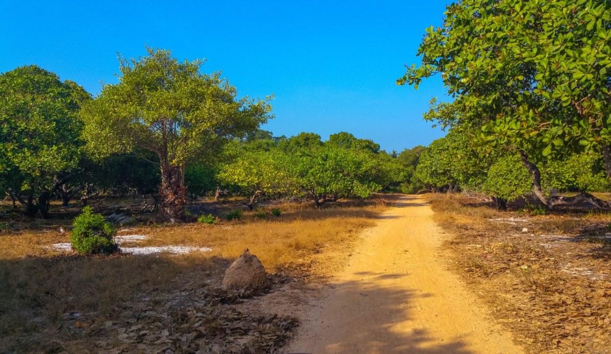 Ko Phayam island-164_1280x743