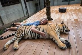 De ce nu vreau să vizitez templele tigrilor din Thailanda