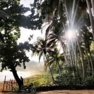 Jurnal de călătorie din Paradis – Ulei împotriva mușcăturilor și scrabble