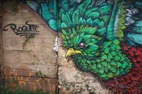 Quetzalul-simbol al libertății