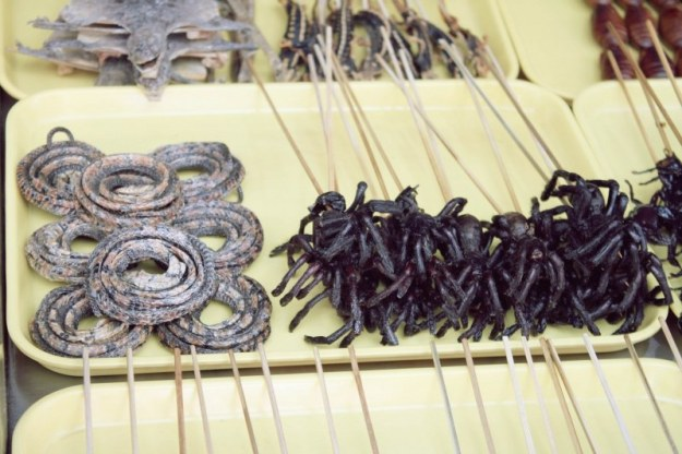 Beijing-d5-10-frigarui-cu-paianjeni-soparle-si-serpi-1024x682