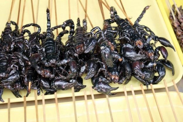 Beijing-d5-13-frigarui-de-scorpion-1024x682