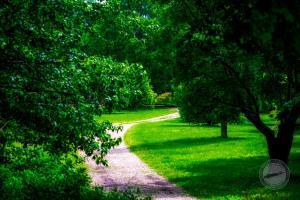 Arboretum Road